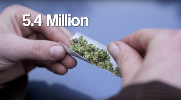 The United States of Marijuana