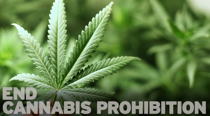 End of Cannabis Prohibition?