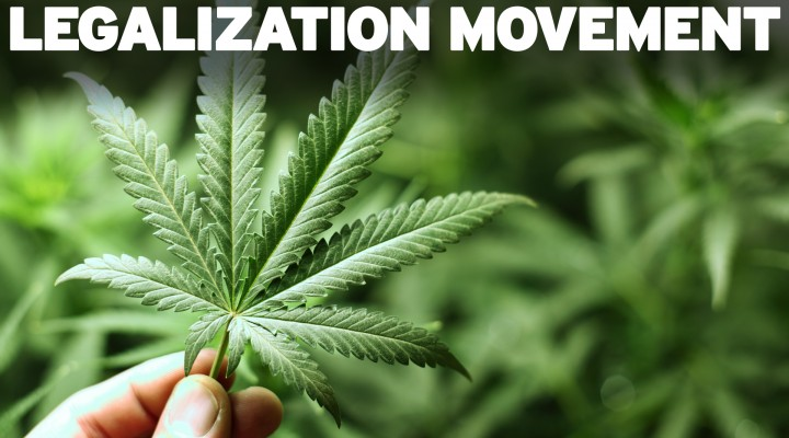 Epic setback in Marijuana  Legalization Movement