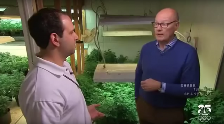 Marijuana in America – Colorado Pot Rush
