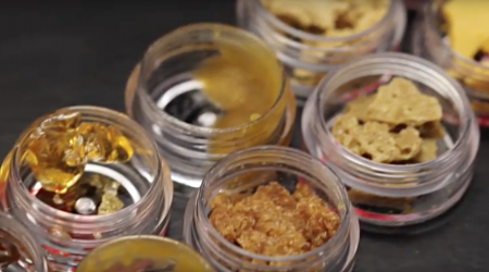 Concentrate Basics: Shatter, Budder and Oil
